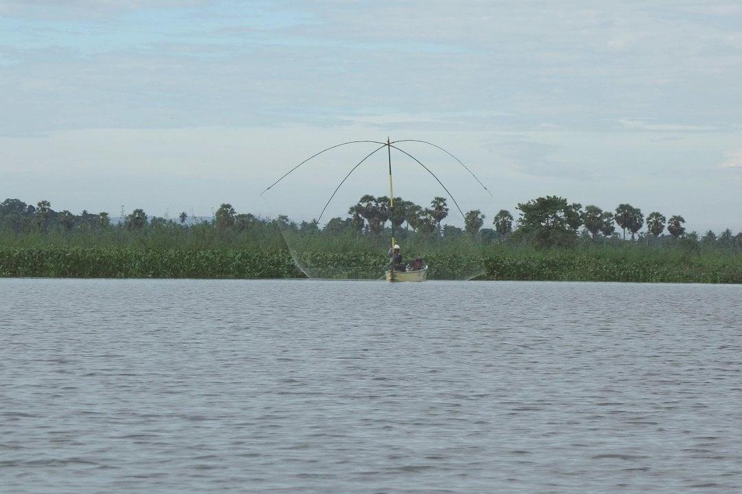 Fisherman throwing his net, Danau Tempe, Sulawesi, Indonesia, floating village