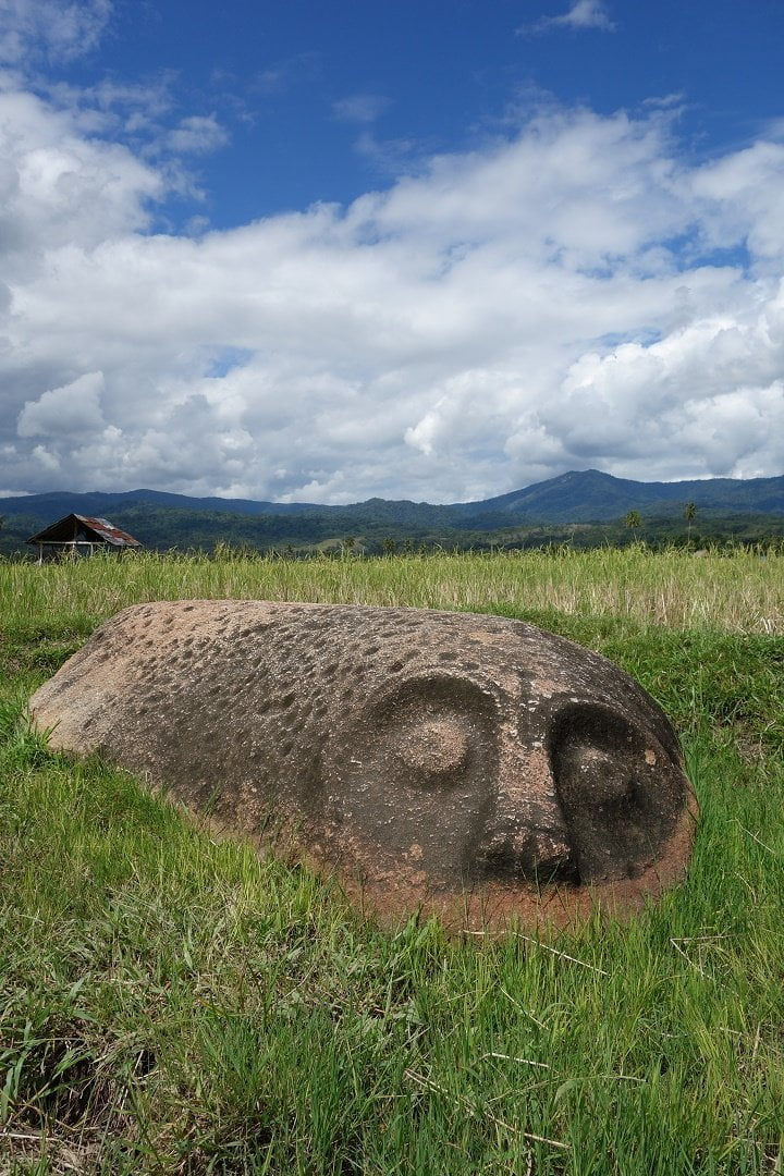 Megalith, Bomba, Lore Lindu National Park, Sulawesi, Tentena