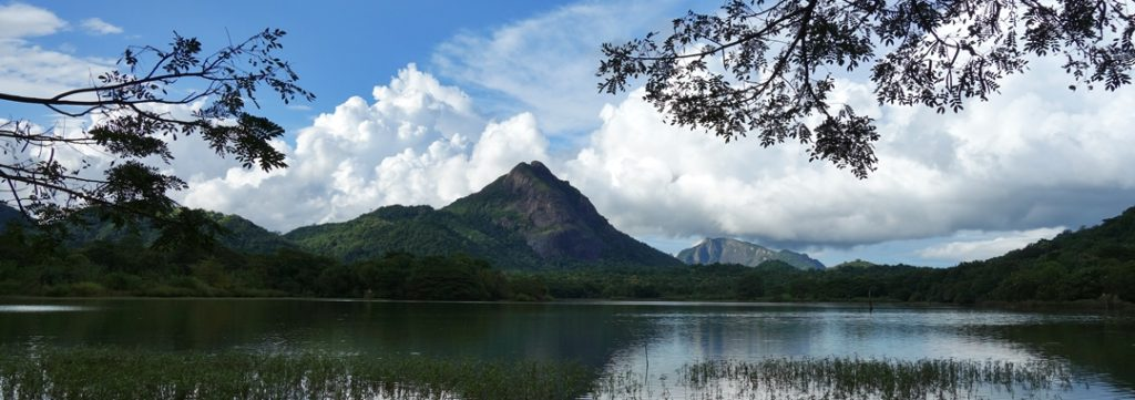 Lake, Nalanda, Sri Lanka