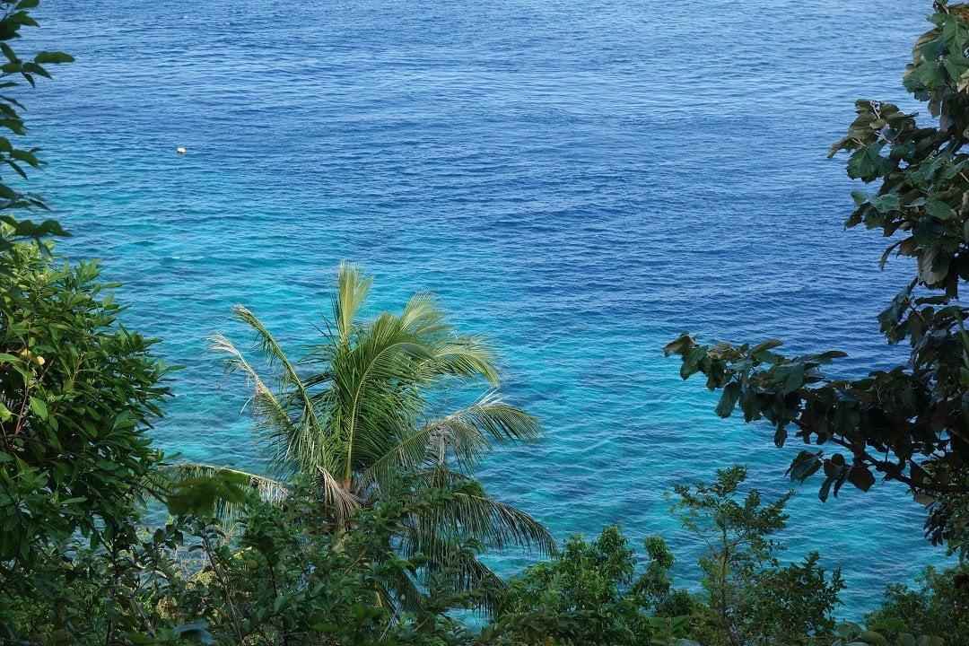 Apo Island Dumaguete, Philippines