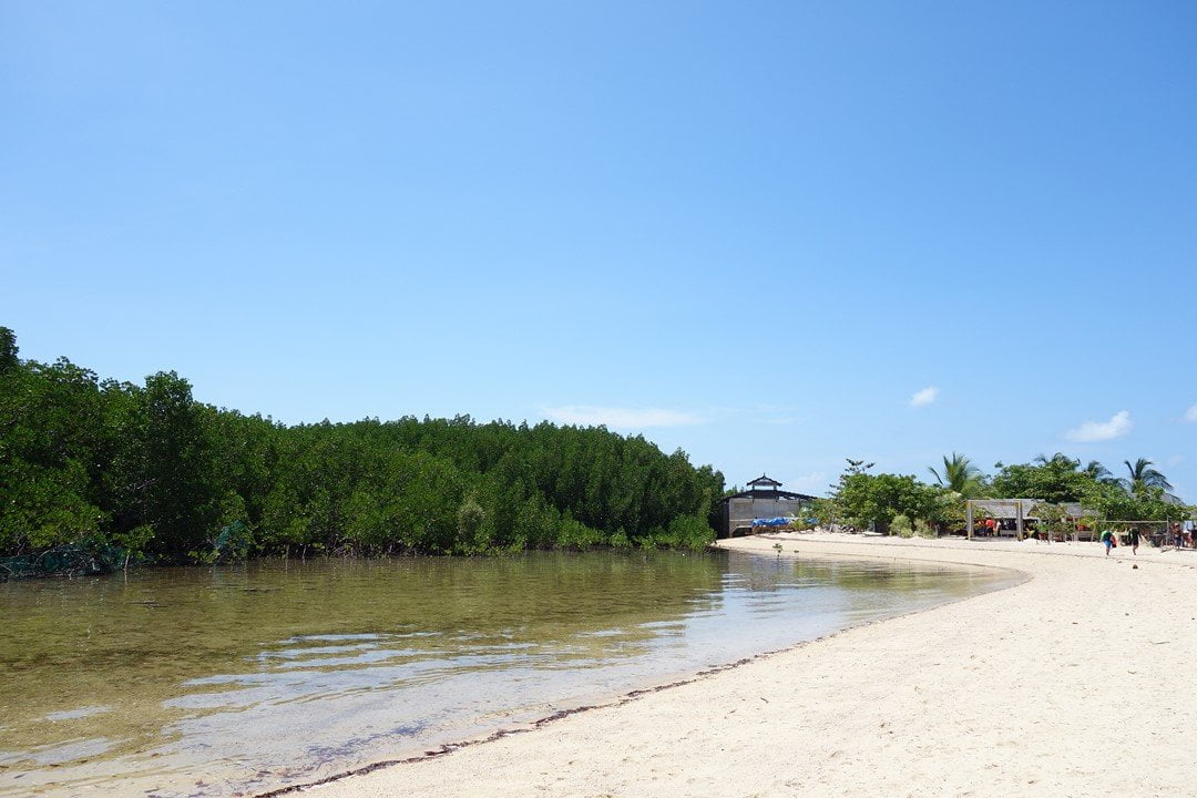 Starfish Island - Honda Bay tour do it yourself