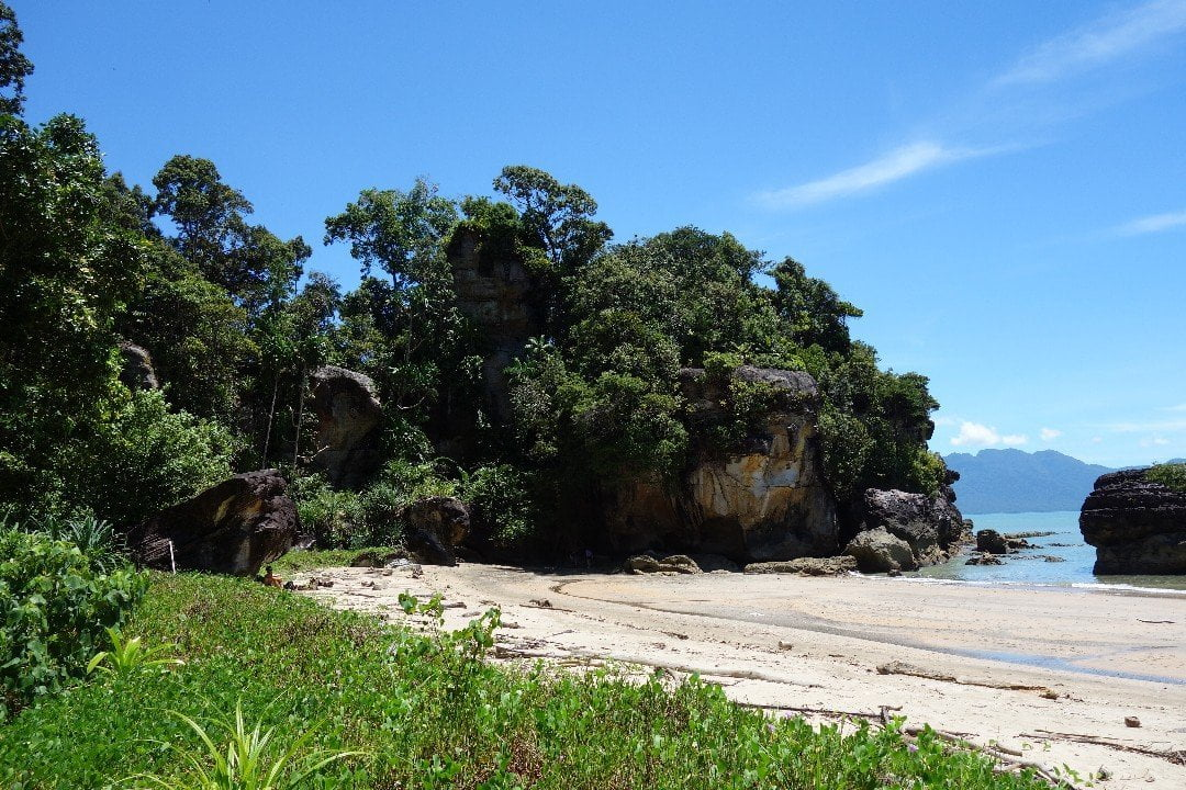 Bako National Park Tour Kuching