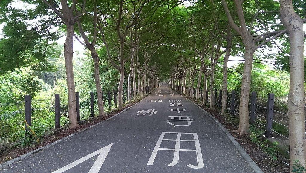Hou Fong bikeway, things to do in Taichung, Taiwan