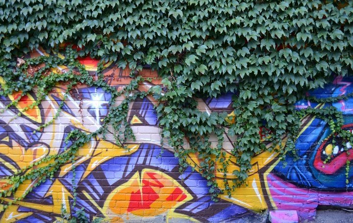 Street art, Taiwan