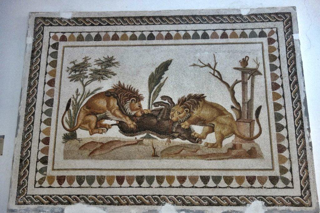 El Jem Museum, mosaic, Tunisia