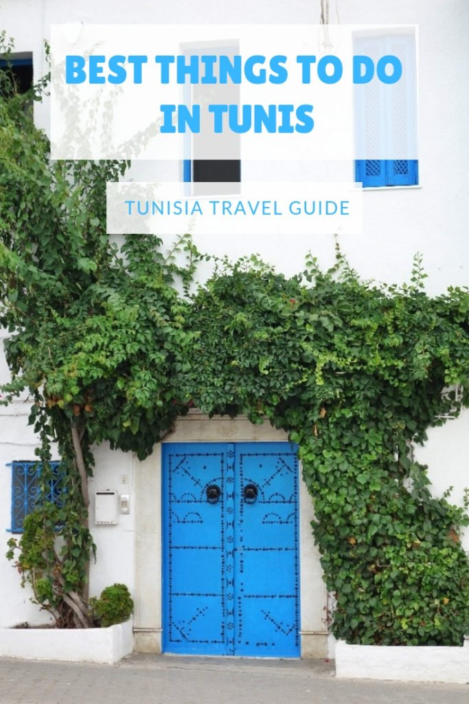 Best things to do in and around Tunis #travel #tunisia #africa
