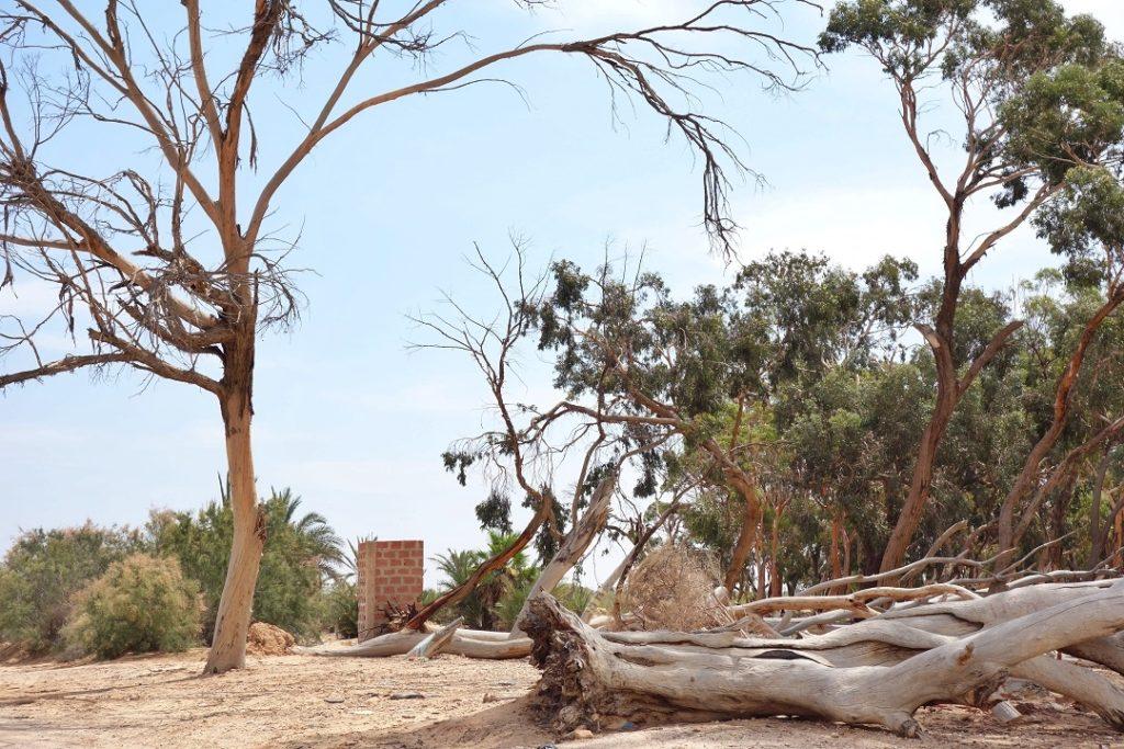 El Hamma, tunisia