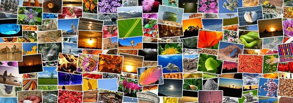 make a photo album