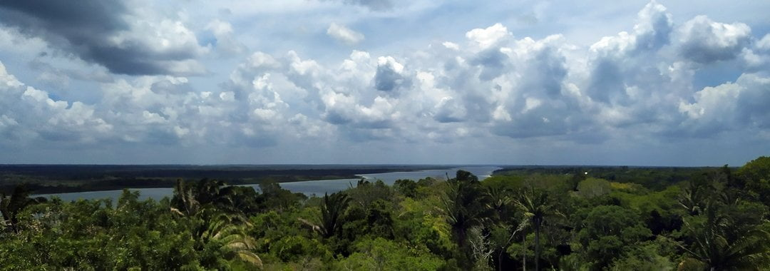 View from the The high temple, river, jungle, Lamanai, Belize