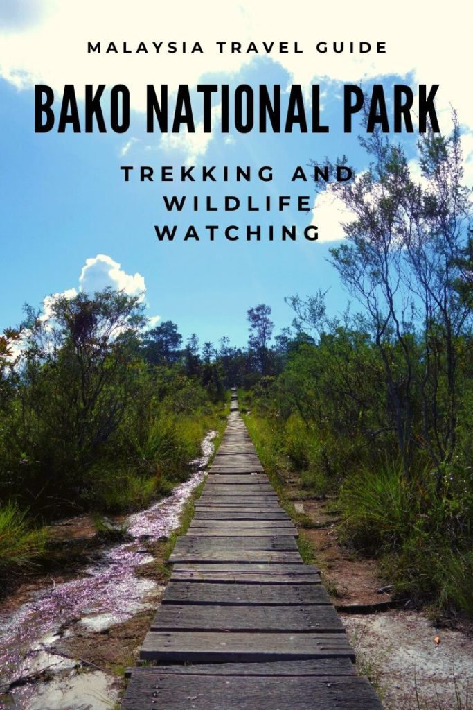 trail in bako national park