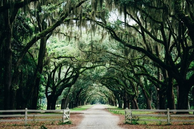 Savannah, best spring break destinations for families